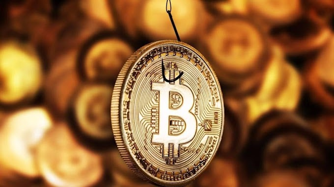 Mr bitcoins betting odds explained each way betting