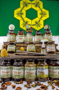 Miel Pura de distinto origen floral producto saludable