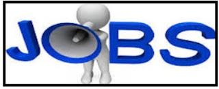 Monitoring and Evaluation Officer (Borno)@ CCDRN