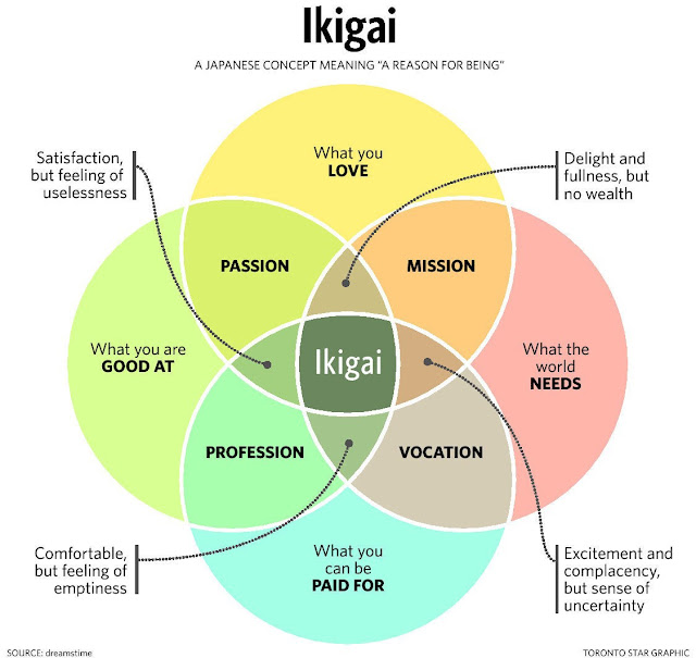 The Ikigai: Find the meaning of your life!