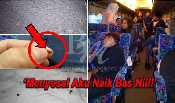 MALANG!! Bas Ekspress Penuh Pepijat Serang 26 Penumpang Sepanjang Perjalanan
