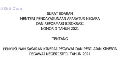 Surat Edaran (SE) Menpan RB Nomor 3 Tahun 2021 Tentang Penyusunan SKP dan PKPNS