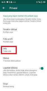 cara menghilangkan info whatsapp tanpa aplikasi
