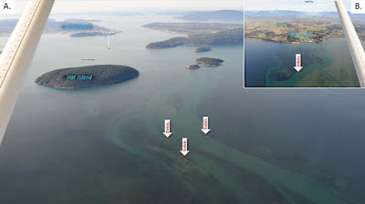 "Image A shows Hat Island and Anacortes labeled. Inset Image B, land labeled Bayview. Arrows labeled ""debris"" point to orange spots in the red and green water."