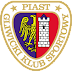 Piast Gliwice 2019/2020 - Effectif actuel