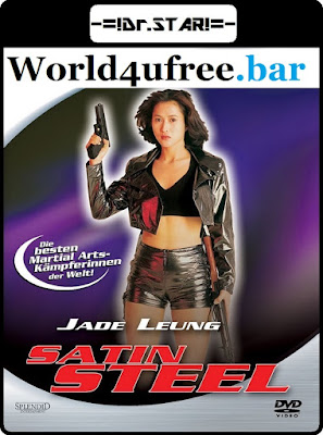 Satin Steel 1994 Dual Audio WEB-DL 480p 250Mb x264