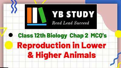 Reproduction in lower and higher Animals MCQ with Answers