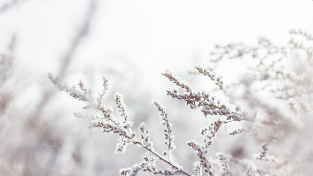 Prepara-te para o invernos com os aquecedores inteligentes da Xiaomi