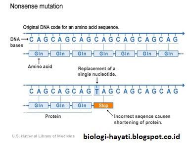 Mutasi tanpa arti