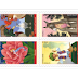 Philatélie, carnet de timbres Contes Merveilleux