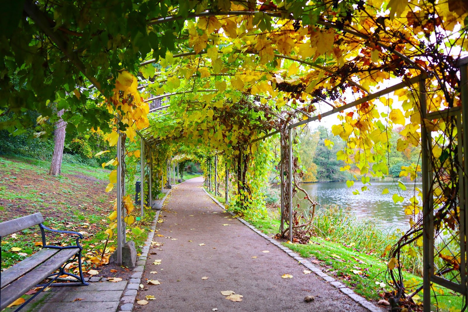Copenhagen walking tour botanical gardens