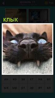 кошка вцепилась своими клыками в подушку 667 слов 11 уровень