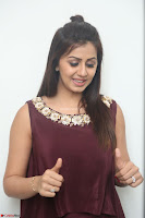 Nikki Galrani in a Brown Shining Sleeveless Gown at Nakshatram music launch ~  Exclusive 022.JPG
