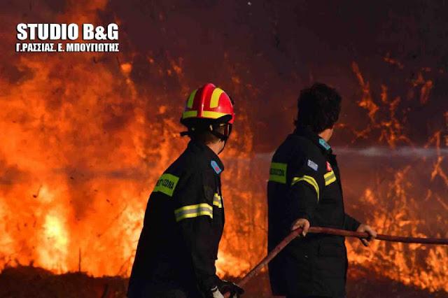 Υψηλός την Κυριακή ο κίνδυνος εκδήλωσης πυρκαγιάς στην Αργολίδα