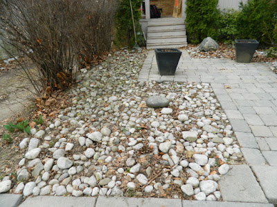 Spring Front Garden Cleanup before Mount Pleasant East Davisville by Paul Jung Gardening Services a Toronto Gardening Company