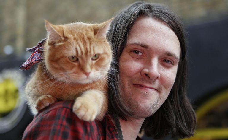 A Streetcat Named Bob - Home   Facebook