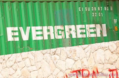 Inilah 10 Evergreen Niche Terbaik Sebagai Acuan Anda Dalam Memulai Blogging