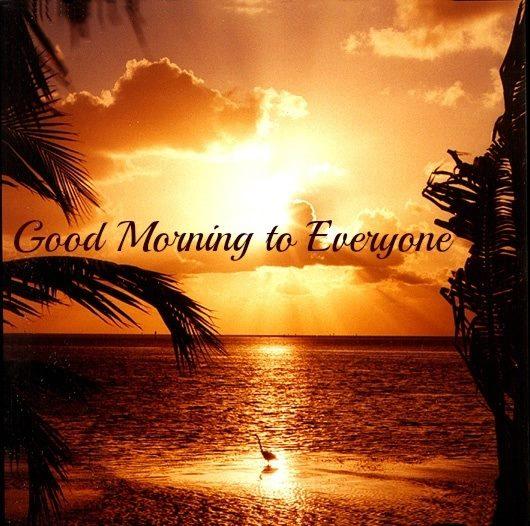 morning gi