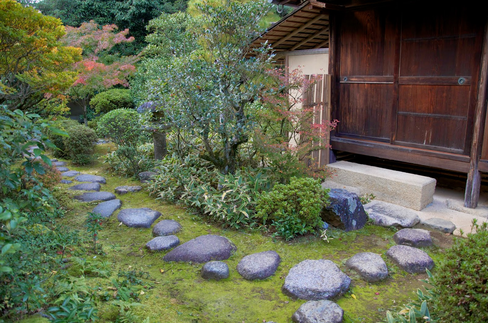 Path Leafing To A Shoe Leaving Stone Koto In