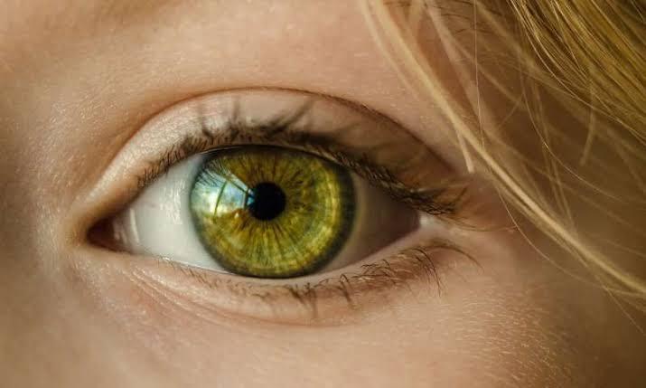 megapixels in human eyes