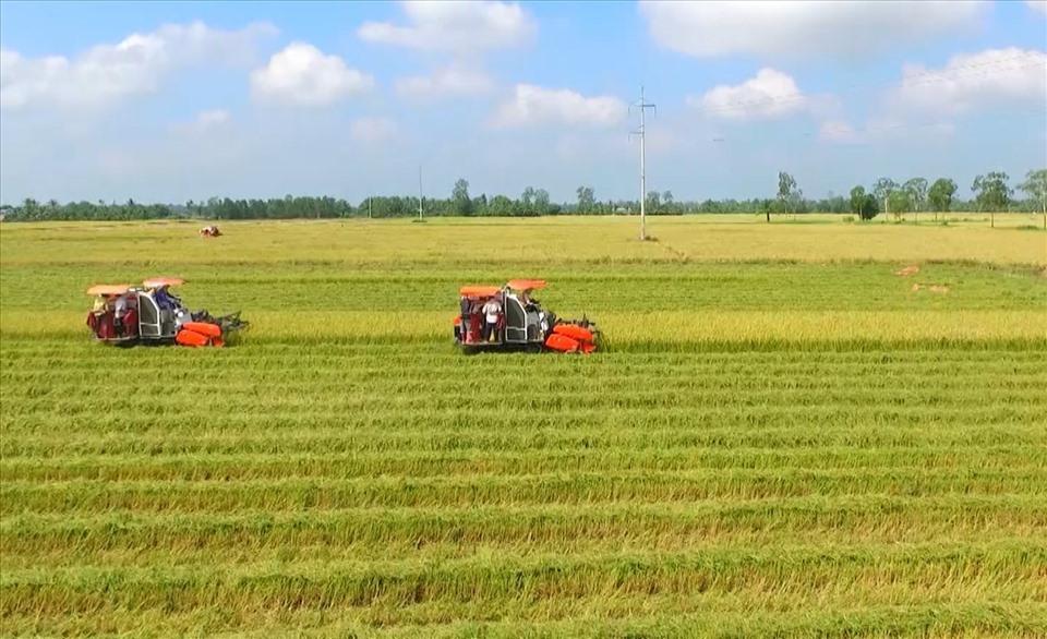Điều kiện, trình tự thủ tục tách thửa đất theo quy định mới nhất