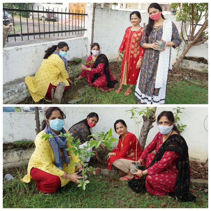 भौतिक सुख सुविधा से दूर रहने पर पर्यावरण संरक्षित रहेगा : सरिता सिंह