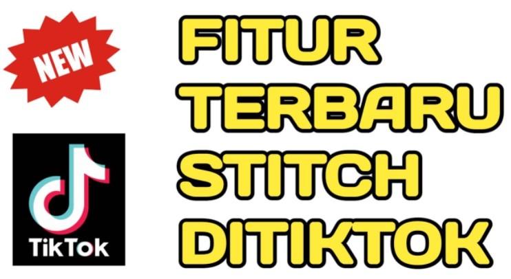 cara stitch di TikTok