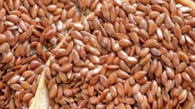 Eat or not eat flaxseed seeds during pregnancy