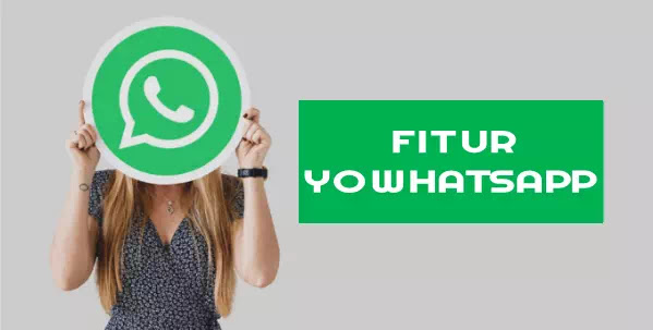 Link Download YOWhatsApp Apk terbaru versi 8.70