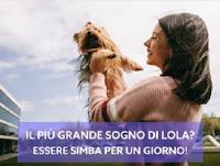 Logo Barkyn realizza il sogno del tuo cane! Partecipa gratis