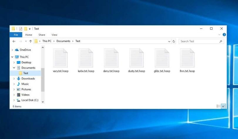 Mengatasi Semua File Komputer Menjadi .hoop Mengatasi virus Hoop