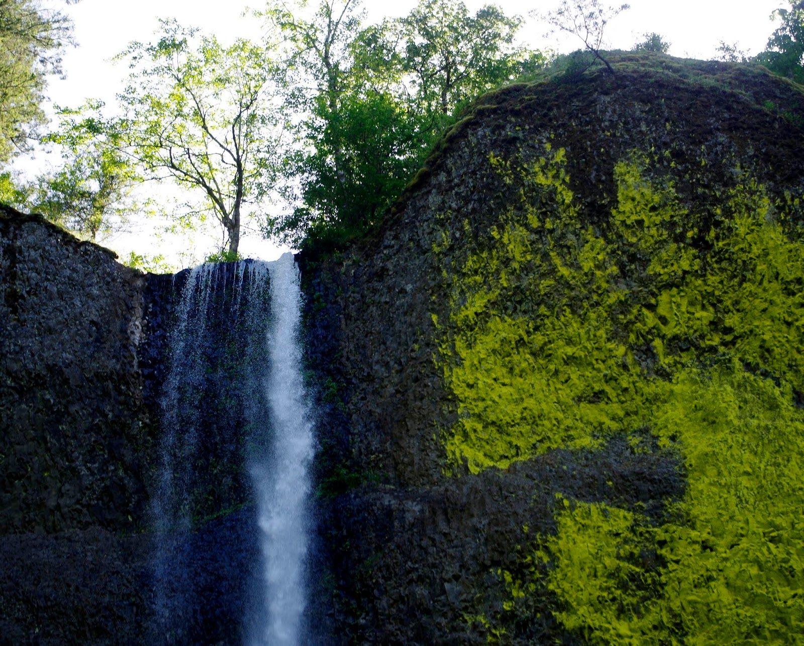 Pacific Northwest Seasons: Waterfall Hikes in the Pacific ...