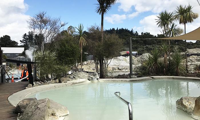 rotorua hells gate mud spa pool