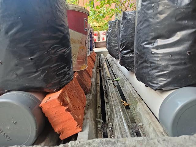 Foto Cabai Sistem Fertigasi Kapiler