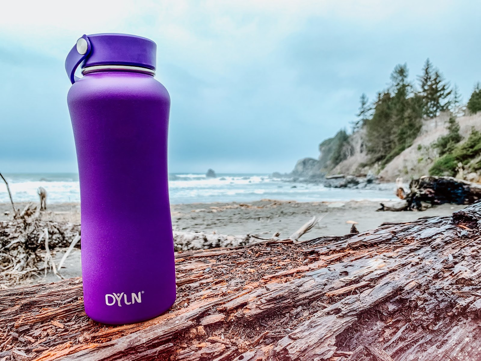 DYLN Water Bottle