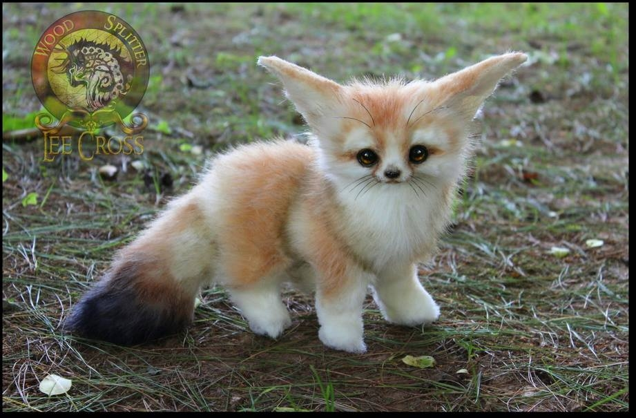 03-Baby-Fennec-Fox-Wood-Splitter-Lee-Animals-Art-that-look-Alive-www-designstack-co