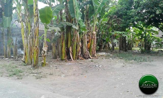 Tanah Kavling di Purwomartani, Sleman