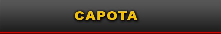 http://www.afogadosveiculos.com/search/label/CAPOTA?m=1