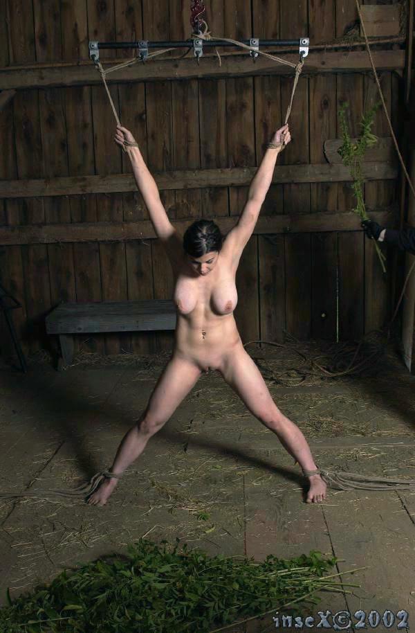 Muscular man fucks her wildly