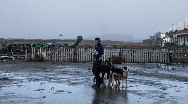 Pietro paseando a sus perros en 'Dogman'