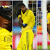 Lille sacks former Super Eagles goalkeeper, Vincent Enyeama via sms