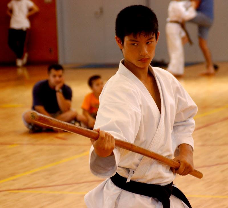 Neko Random: Fact Of The Day: You're No Karate Master