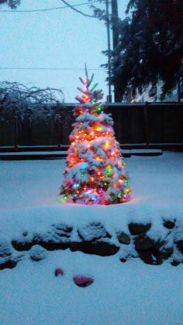 a brightly decorated christmas tree sits in the center of a snow covered yard