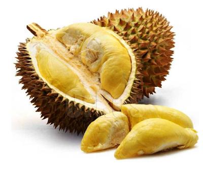Buah durian1