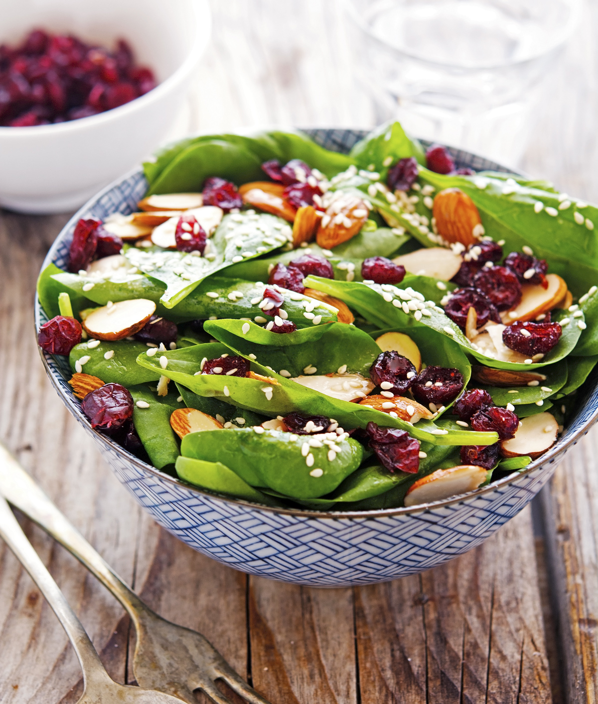 Cranberry Almond Spinach Salad with Sesame Dressing