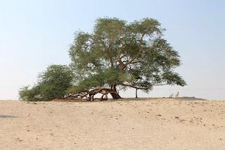 Pohon Unik Tree of Life Bahrain