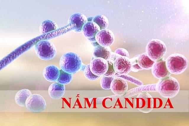 Bị huyết trắng do nhiễm Candida albicans