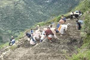 Pueblos Originarios De Chile Agricultura