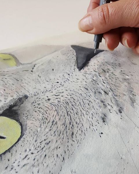 New Zealand Contemporary Artists