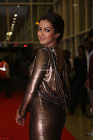 Actress Catherine Tresa in Golden Skin Tight Backless Gown at Gautam Nanda music launchi ~ Exclusive Celebrities Galleries 038.JPG